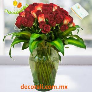 72 rosas en jarron