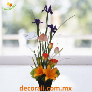 Iris rosas y lilis
