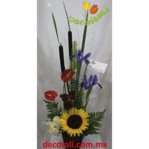 Anthurio iris y girasol