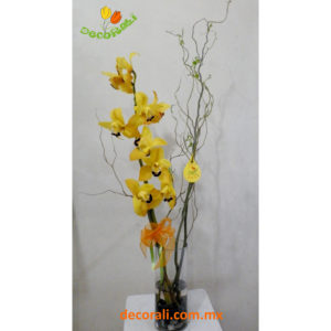 Orquidea cymbidium y curly willow