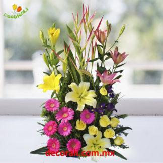 Iris gerberas y lilis