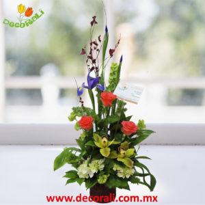 Orquidea cymbidium rosas y hortensias