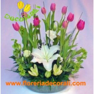 10 tulipanes y lilis