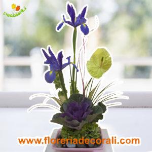 Detalle de iris y anthurio