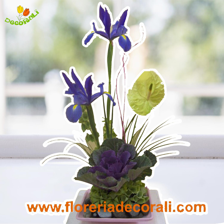 Iris y anthurio