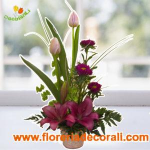 Tulipan lilis y matsumoto