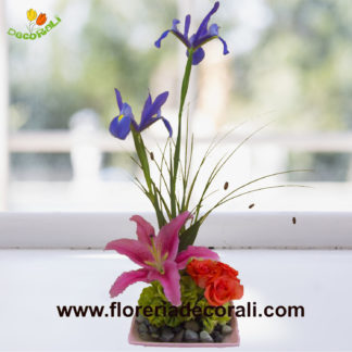 Iris lilis y rosas.