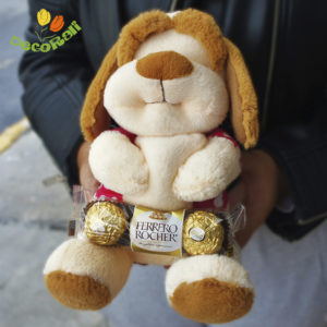 Pack de peluche y chocolate