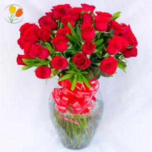 50 rosas rojas en jarron