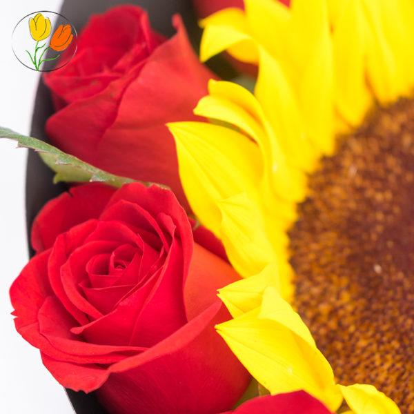 Girasol y rosas en cono