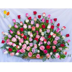 100 rosas de colores en canasta