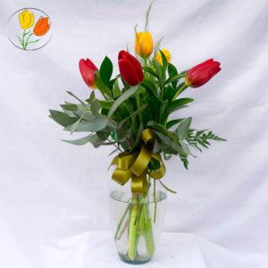 5 tulipanes en florero